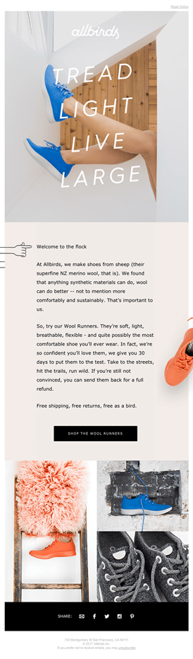 Allbirds welcome email