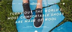 Allbirds Site Imagery