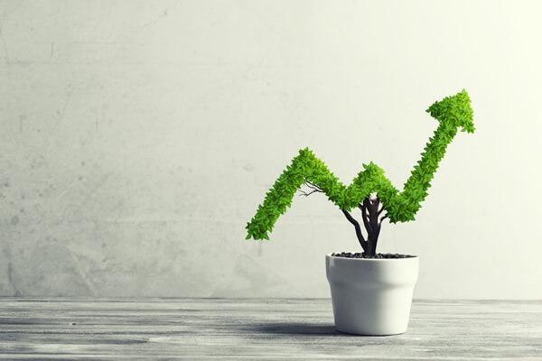 increasing e-commerce profitability