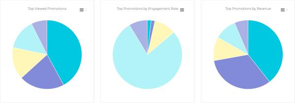Promotion Pie Chart