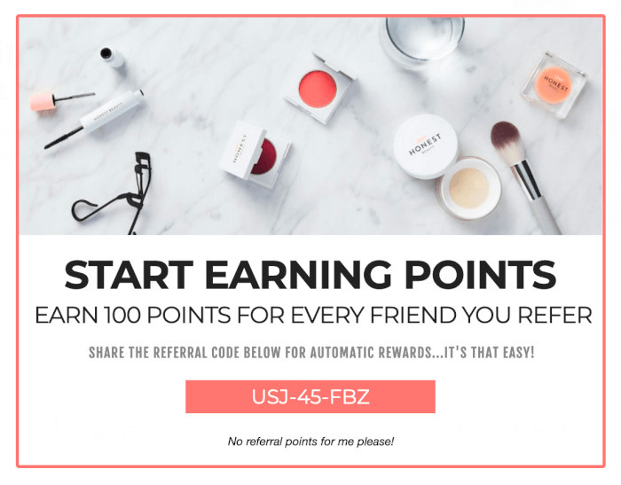 Loyalty Program Referral Promotion
