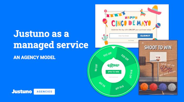 Justuno Agency Service Model