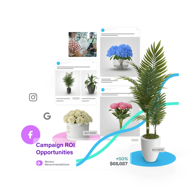 optily campaign roi opportunities
